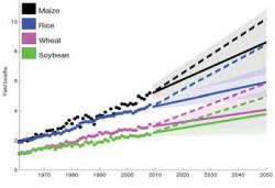 Historical and projected crop yields. Solid lines represent the current rate of growth, and dashed lines the rates estimated to meet food demands for 2050.